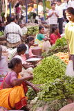 Indian vegetable sellers. Indian women vegetable sellers in a market royalty free stock photos