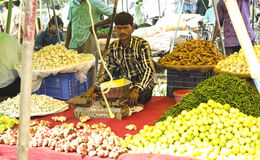 Indian vegetable vendor. Having a good variety of food ingredients Royalty Free Stock Photos