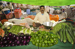 Indian vegetable vendor. Having a good variety of food ingredients Royalty Free Stock Photography