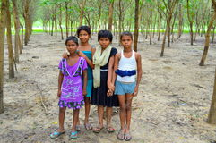 Indian village girls. Indian village girl in the Jungle for collecting firewood Stock Photo