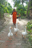 Indian Village Life. Royalty Free Stock Photos