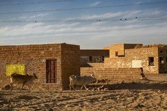 Indian village in the sandy desert royalty free stock images