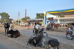 Indian Village Scene stock photography