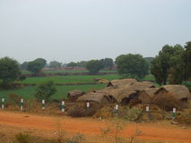 Indian Village Scene. Cluster of huts in an Indian village with green fields behind them Stock Photos