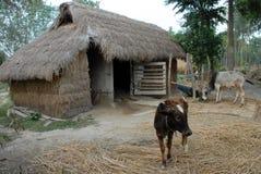 Indian village Stock Photo