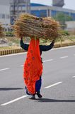 Indian village woman  Royalty Free Stock Photography