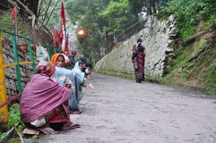 Indian village women. Begging for alms outside a temple Stock Photography