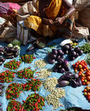 Indian villagers sell eggplant Royalty Free Stock Photo