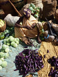 Indian villagers sell eggplant Royalty Free Stock Photos