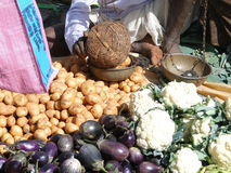Indian villagers sell eggplant Royalty Free Stock Photography