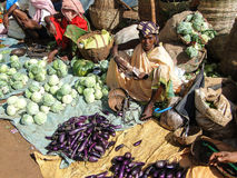 Indian villagers sell eggplant Stock Images