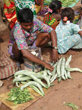 Indian villagers sell squash, cucumbers Royalty Free Stock Image
