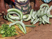 Indian villagers sell squash Royalty Free Stock Images