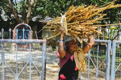 Indian woman carries firewood goods on his head at city street. 12 february 2018 Puttaparthi, India Stock Image