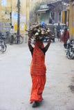 Indian woman carrying wood on her head, Bundi, India Royalty Free Stock Photos
