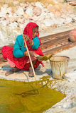 Indian woman collects algae Stock Images