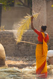 Indian Woman Hitting Palm Leaf Thatch Roof Stock Photos