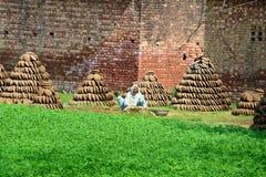 Indian village woman Royalty Free Stock Photos
