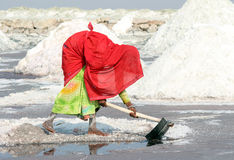 Indian woman mined salt in salt lake Stock Photography