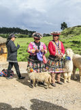 Indian woman pose with a lama for tourists in Cuzco Stock Photos