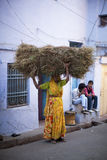 Indian woman in sari carrying twigs on her head Stock Images