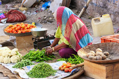 Indian woman selling vegetables, Sadar Market, Jodhpur, India Stock Photos