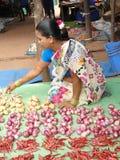 Indian woman sells chilis Royalty Free Stock Photos