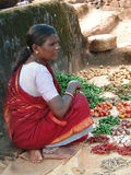 Indian woman sells chilis Royalty Free Stock Images