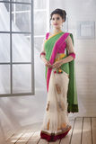 Indian Woman wearing traditional saree stock photography