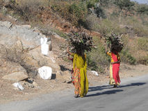 Indian women carrying firewood Royalty Free Stock Photography