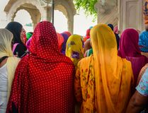 Indian women praying at Golden Temple Royalty Free Stock Photo