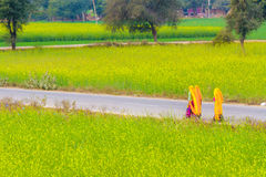 Indian women on a village road. Royalty Free Stock Photo