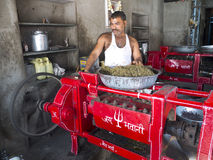 Indian worker making mustard. Royalty Free Stock Photo