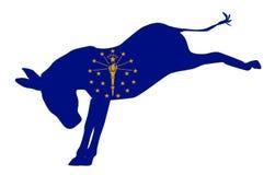 Indiana Democrat Donkey Flag Stock Photography