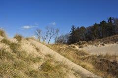 Indiana diun stanu park w wczesnej zimie fotografia stock