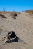 Indiana Dunes National Lakeshore stock photos