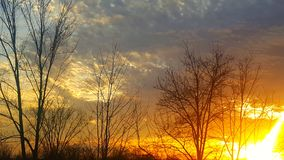 Indiana Febuary sunset 2. Sunsets blue sky clouds trees Royalty Free Stock Image