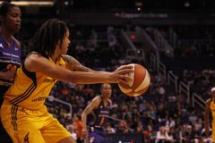 Indiana Fever Fotografia Stock