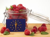 Indiana flag on a wooden panel with raspberries isolated on a wh. Ite background Stock Photo