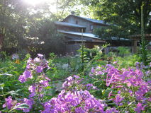 Indiana Inn and garden. Inn and garden with flower garden and morning sun coming through the trees - Brown County Indiana royalty free stock image