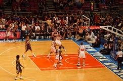 indiana ogrodowi stępaki Knicks Madison kwadratowy x Fotografia Stock