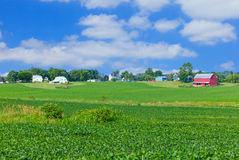 Indiana rural farm country,crop,field,barn(P) Royalty Free Stock Images