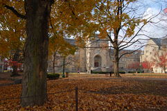 Indiana university campus. Old building and tree in autumn at indiana university, bloomington, IN Stock Images