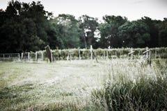 Indiana Vineyard Photos libres de droits