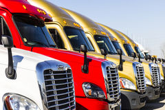 Indianapolis - Circa November 2016: Freightliner Semi Tractor Trailer Trucks Lined up for Sale I Royalty Free Stock Images