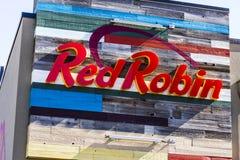 Indianapolis - circa octubre de 2016: Robin Logo y señalización rojos El petirrojo rojo es una cadena de restaurantes de cena cas Foto de archivo libre de regalías