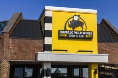 Indianapolis - circa settembre 2016: Griglia delle ali della Buffalo e ristorante selvaggi I di Antivari Immagini Stock Libere da Diritti