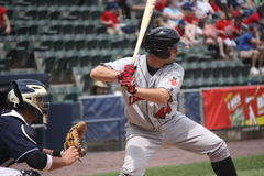 Indianapolis Indians Wyatt Toregas. Catcher Royalty Free Stock Image