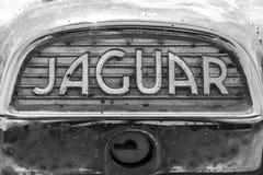 Indianapolis - vers en septembre 2017 : Insignes et emblème d'un 60s classique Jaguar IV Image stock