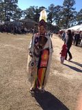 Indianin suknia Obraz Royalty Free
